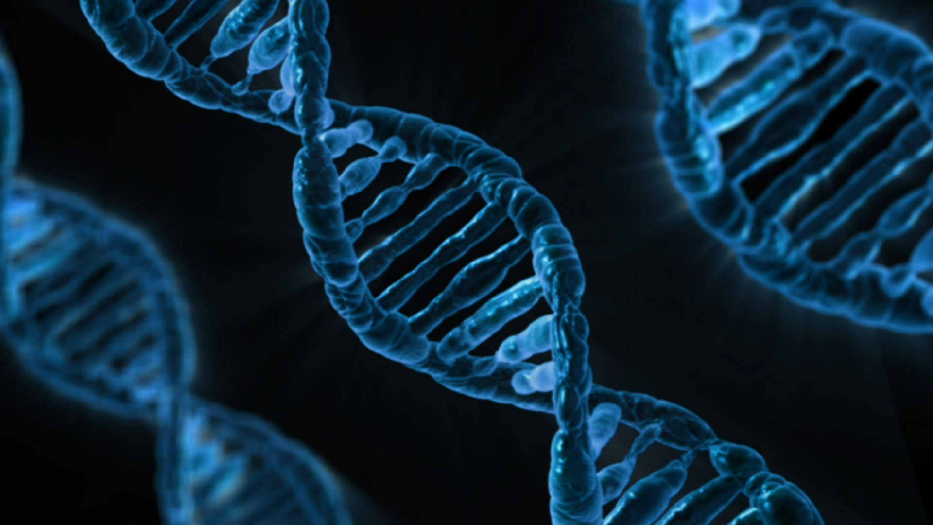 mein Genom: 23andMe und die Analysen von Drittanbietern